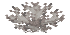Abgestorbener Hirnkorallenfächer.png