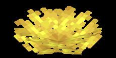 Geweihkorallenfächer.png
