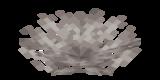 Abgestorbener Geweihkorallenfächer.png