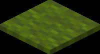Grüner Teppich.png