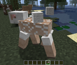 minecraft namensschild jeb