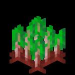 Rote Bete (Block).png
