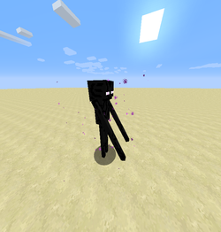 Enderman Barrier.png
