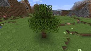 Baum Eiche.png