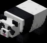Panda verspielt.png