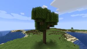 Baum Große Eiche.png
