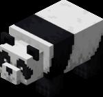 Panda faul.png