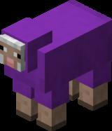 Violettes Schaf.png