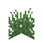 Gras.png