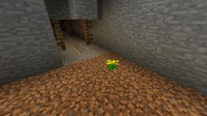 Gewächs Höhlenblume.png