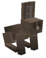 Conejo.png