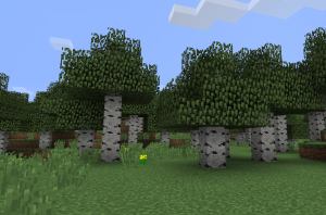 Birch Trees Only.png