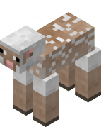 Shorn sheep.png