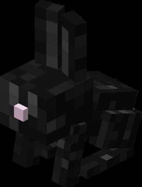 Fichier:Bébé lapin noir.png