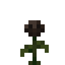 Rose de Wither.png