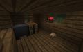 Cabane intérieur.png