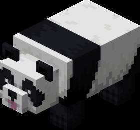 Panda joueur.png