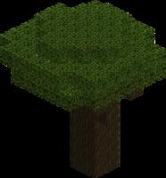 Chêne noir.png