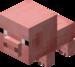 Bébé cochon.png