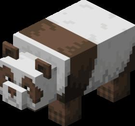 Panda brun.png