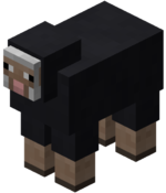 Mouton noir.png