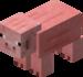 Cochon (visage plat).png