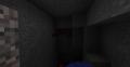 Araignée-grimpant-mur.png