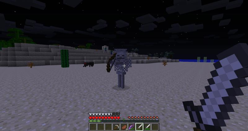 Fichier:Squelette avec une armure en cotte de maille.png