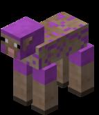 Mouton magenta tondu.png