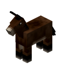 Cheval le minecraft wiki officiel - Cheval minecraft ...