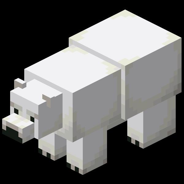 polar bear adults