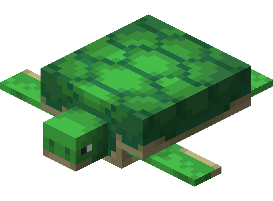 Turtle – Official Minecraft Wiki