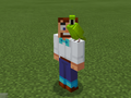 Green Parrot on Party Steve.png