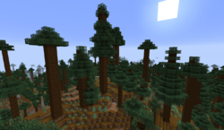 Giant Tree Taiga – Official Minecraft Wiki