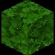 Oak Leaves BE3.png