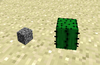 Cactus size.png