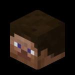 photograph regarding Minecraft Steve Head Printable titled Mob brain Formal Minecraft Wiki