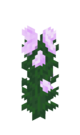 Peony JE1 BE1.png