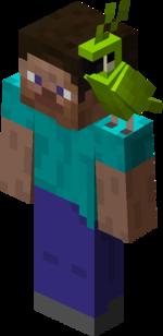 Green Parrot on Steve.png