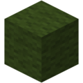 Green Wool JE2 BE2.png