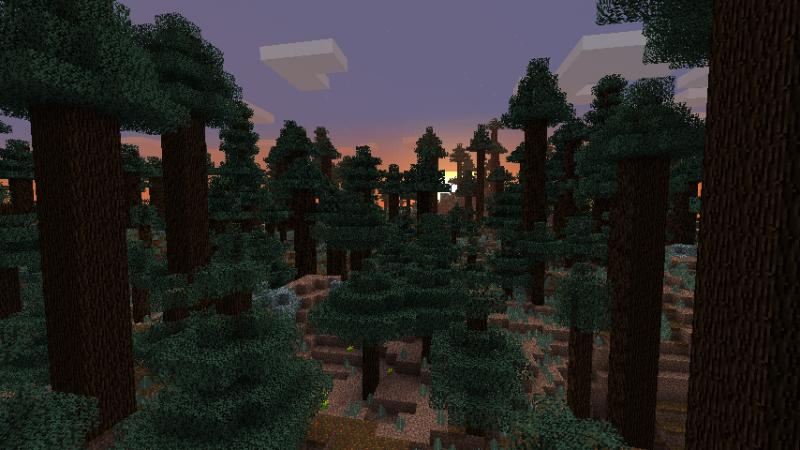 File:Redwood Sunset.png