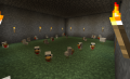 Baby chicken farm.png