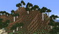 Tall Birch Forest.png