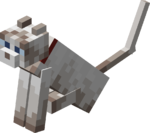Sitting Tamed Ragdoll Cat with Red Collar.png