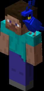 Blue Parrot on Steve.png