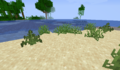 Tall grass on sand.png