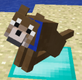 Brown Wolf.png