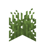 Plains Grass.png