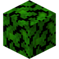 Jungle Leaves (Fast).png