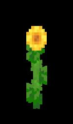 Flower \u2013 Official Minecraft Wiki